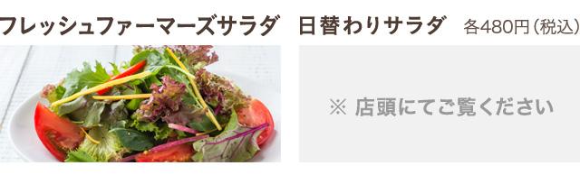 フレッシュファーマーズサラダ(480円)、日替わりサラダ(480円)
