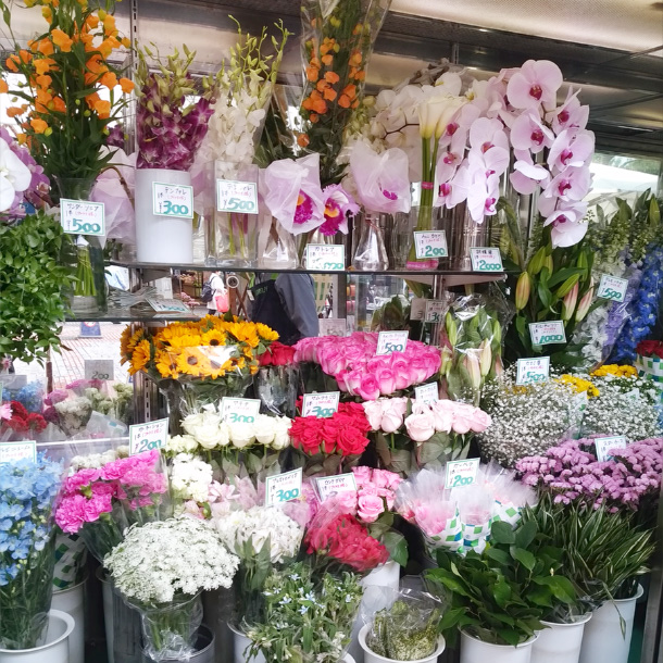 honten_flower_seika