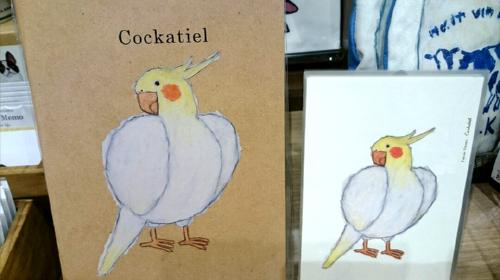 Illustrators collection