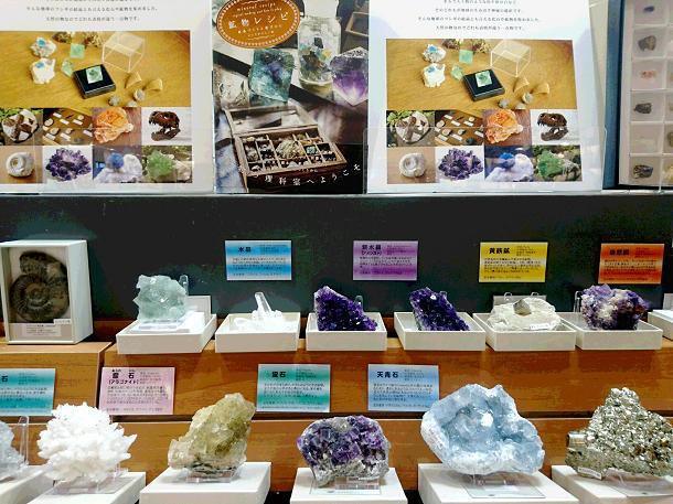 化石・鉱物フェア
