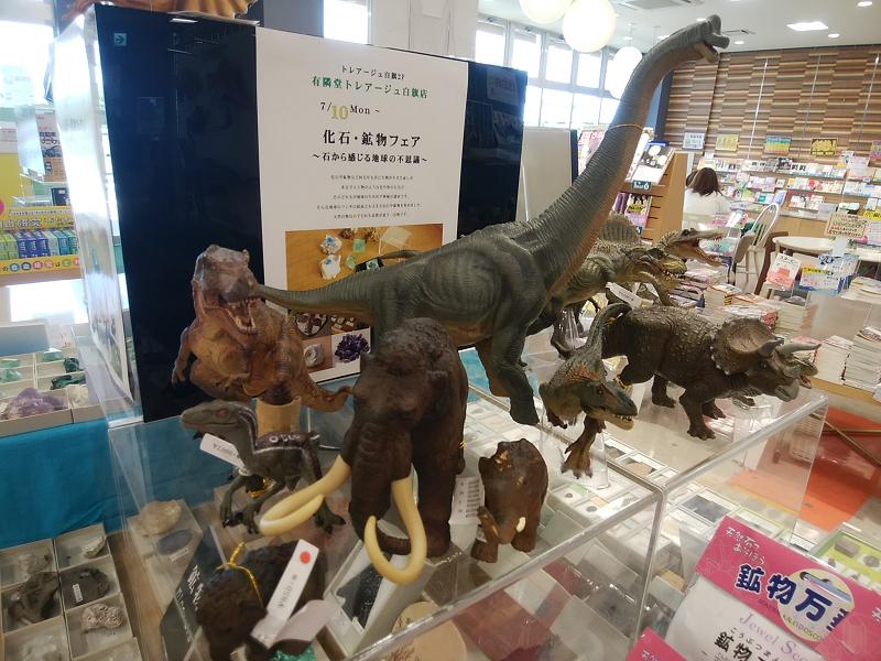 太古のロマンを感じる鉱石と恐竜フィギュアフェア